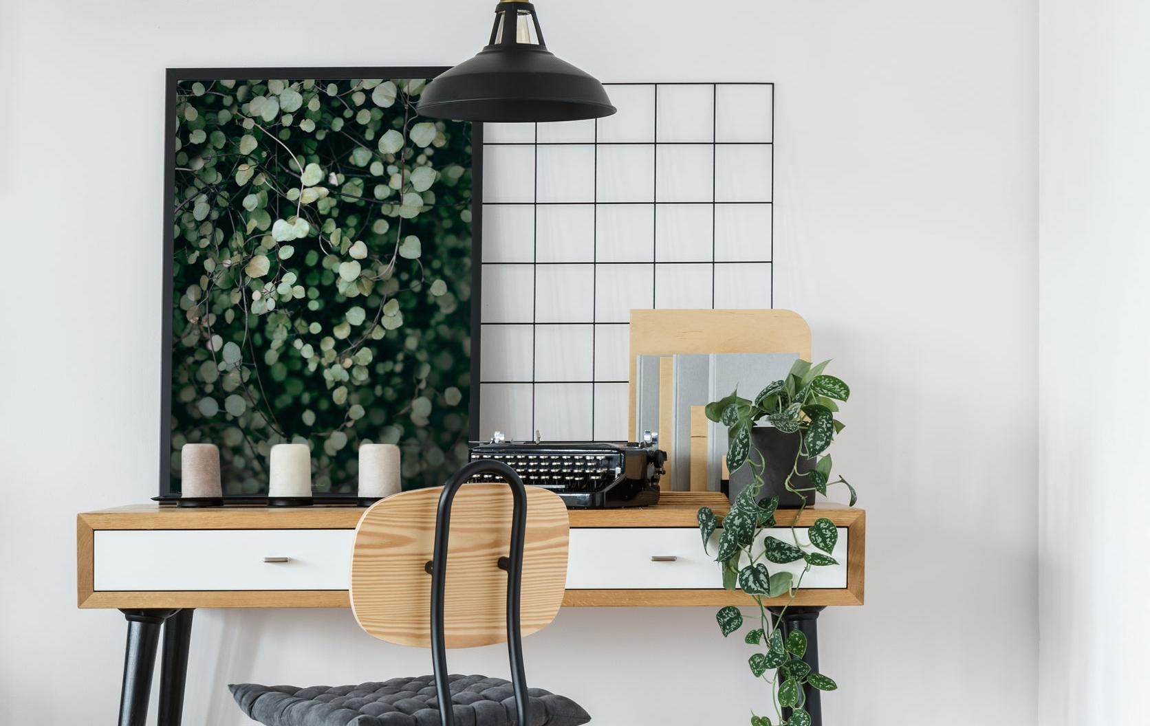 Plakaty botaniczne, zieleń we wnętrzach